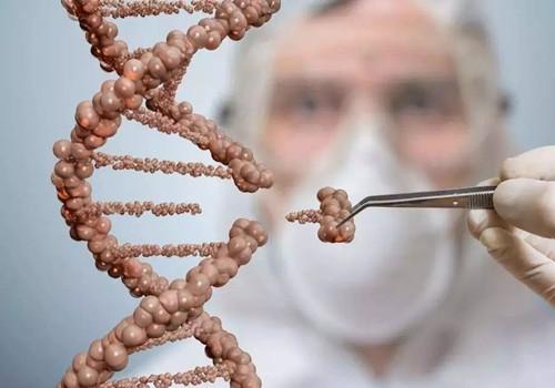 科学家揭示 调控植物干细胞命运的新机制